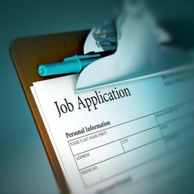 Job-Application-laguage-use